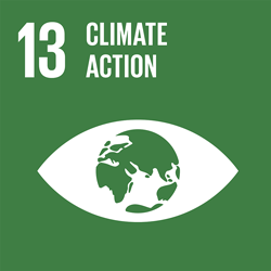 Climate action - Goal 13